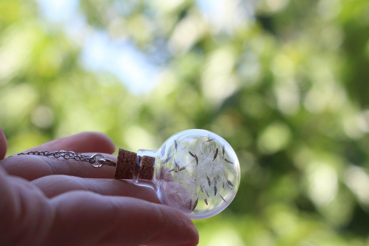 Real dandelion necklace, terrarium necklace, dandelion seed necklace, christmas gift for her necklace, make a wish jewelry.