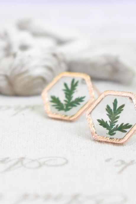 Gold hexagon earrings, Fern earrings in resin, pressed flower tiny earrings stud, dried flower earrings green, resin jewelry studs